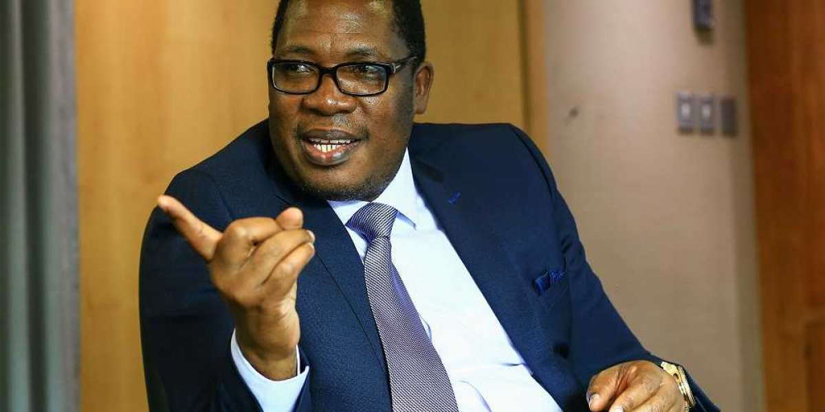 AfriForum to sue Gauteng Education MEC Panyaza Lesufi
