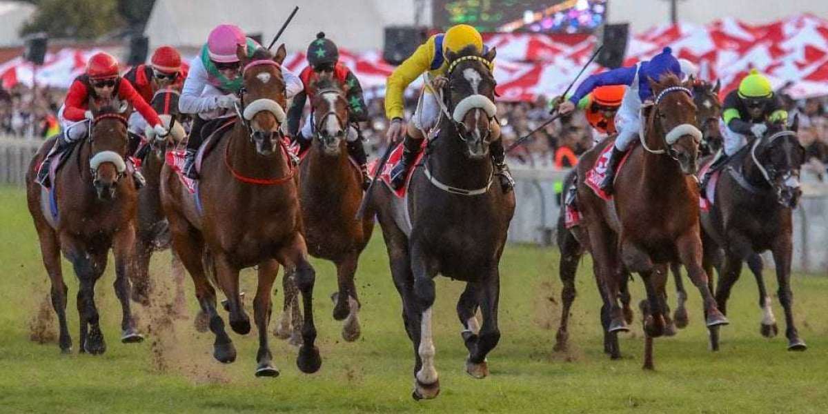 Oppenheimer family put R100 million into horse racing industry