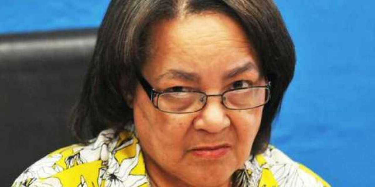 Patricia de Lille: 'Don't allow racists to speak on behalf of us'